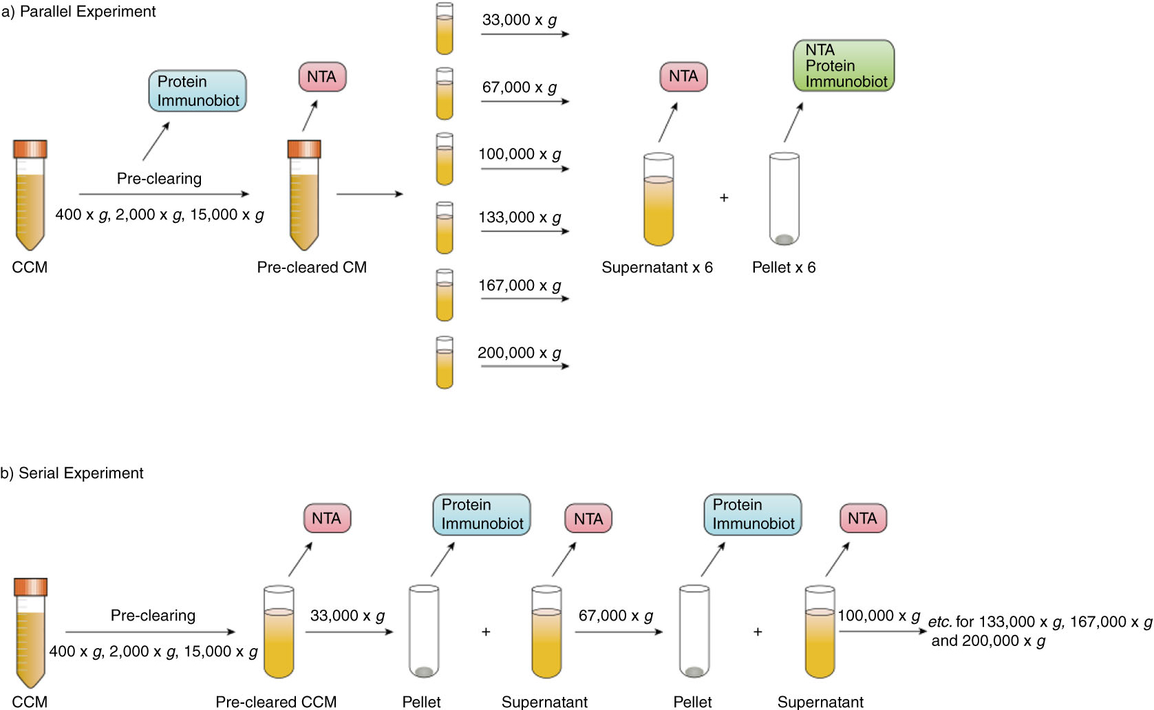 differential protein precipitation Ammonium sulphate fractionation proteins are soluble in aqueous media because they have hydrophilic  selective precipitation using non-ionic polymers such.