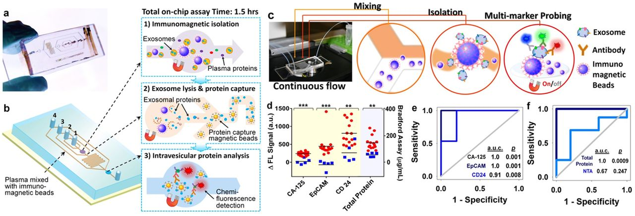 Microfluidic exosome analysis toward liquid biopsy for for Lab on a chip template