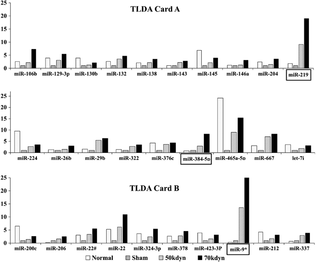 Circulating Micrornas As Biomarkers For Evaluating The