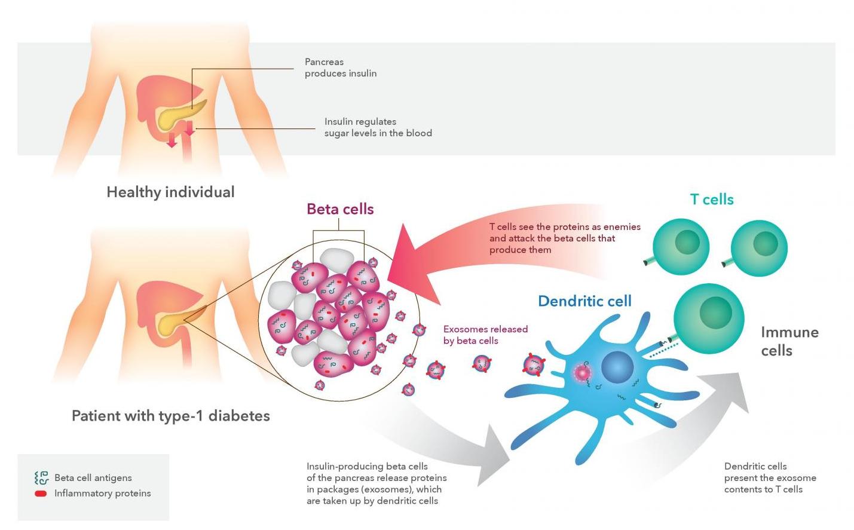 Immune Design Jobs