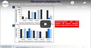 exosomes